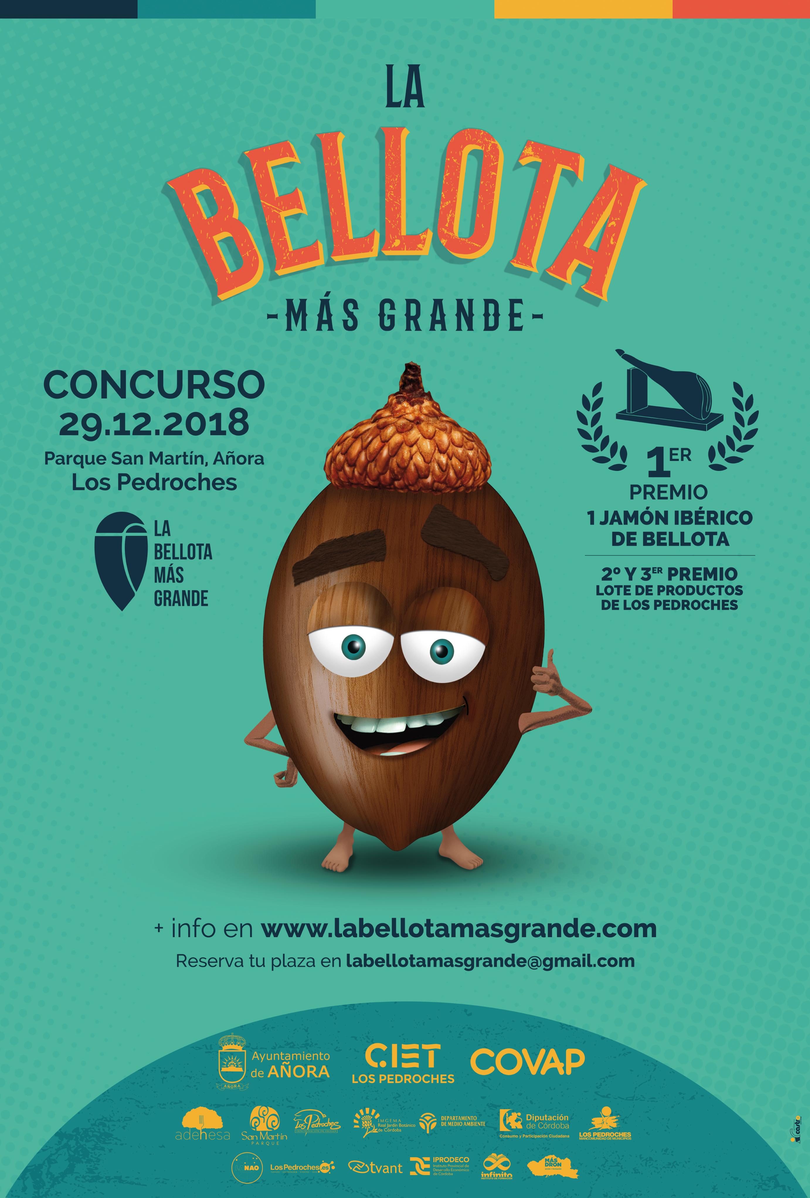 Concurso La Bellota más Grande - Los Pedroches